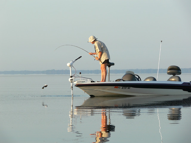 Catch on a calm day at a lake in kissimmee catching fish for Lake kissimmee fishing report