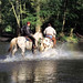 Belgium - Horse Riding