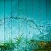 Water / Texture / Rain