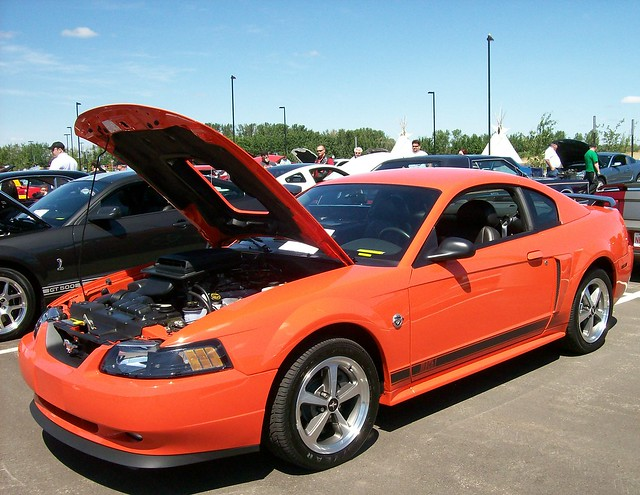 2004 ford mustang mach 1 colors. Black Bedroom Furniture Sets. Home Design Ideas