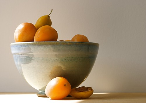 still life with mirabelles.     Explore F.P. | by penwren