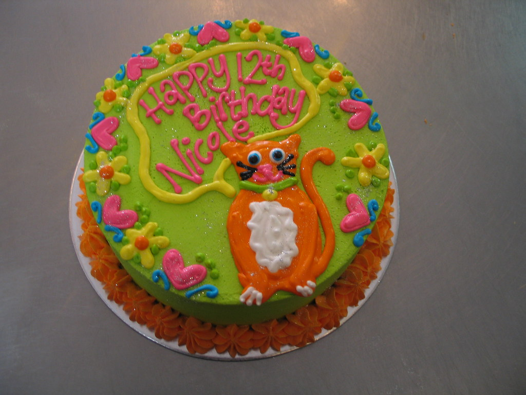 Round Birthday Cake With Gingercat And Piped Designs Flickr