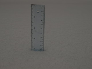 First measurement, 7:50 a.m. - 7 7/8 inches | by wfyurasko