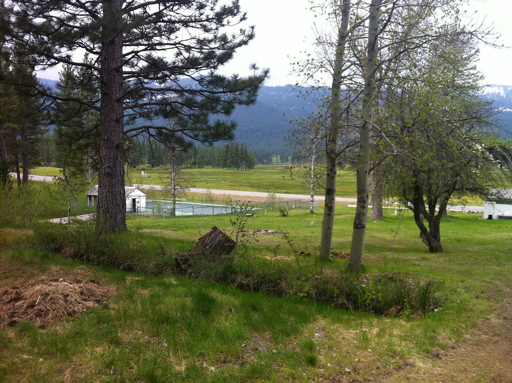 white sulphur springs online dating Get directions, reviews and information for bank of the rockies in white sulphur springs, mt.