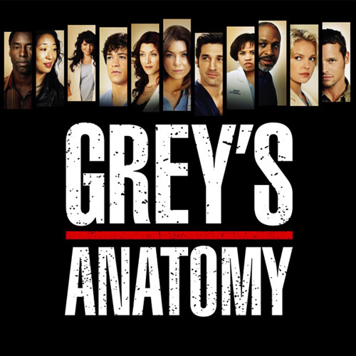 Grey's Anatomy: Season 3 | Quentin Meulepas | Flickr