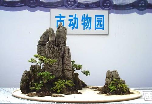 2009 landscape bonsai exhibition in chongqing