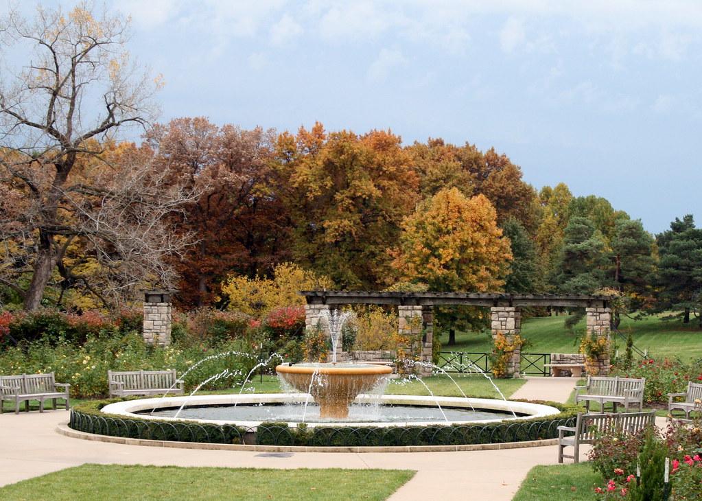 Rose Garden Loose Park Wornall Rd Kansas City Mo Pink