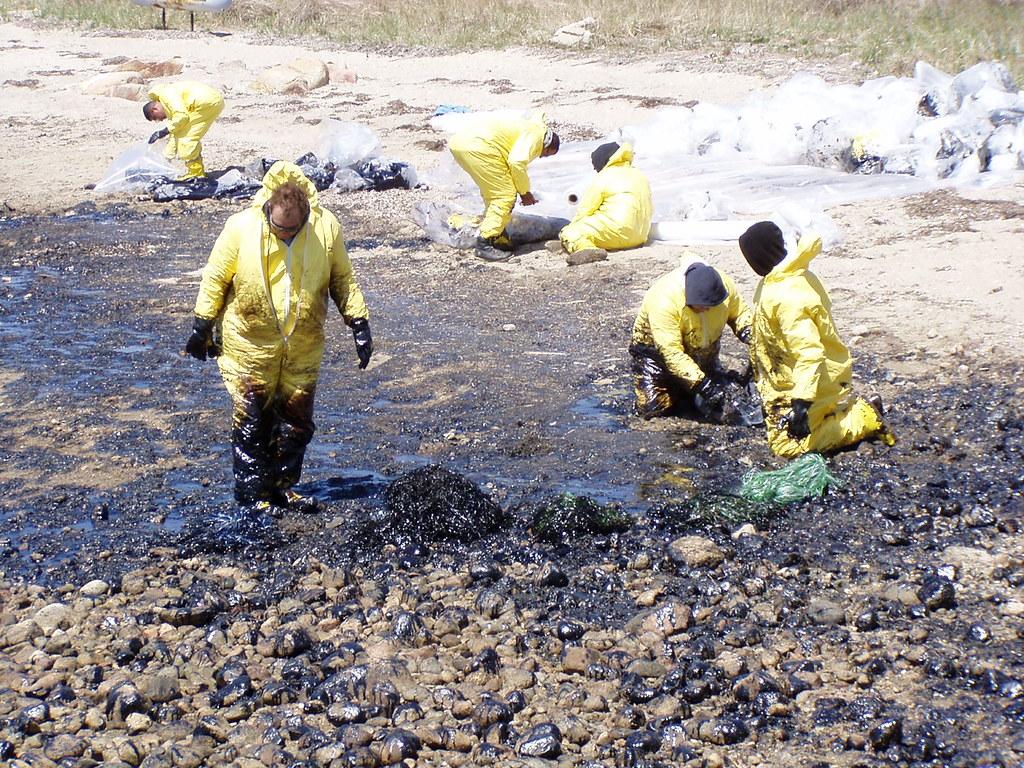 Image result for bouchard oil spill