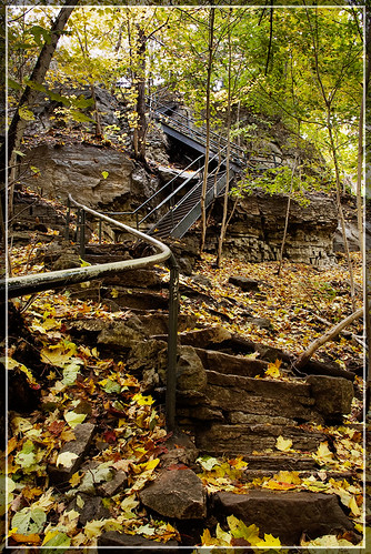 Stairway at Webster's Falls | by fadi3