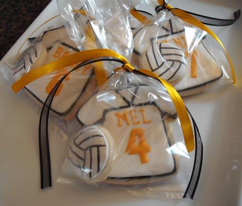 Volleyball - Girls | AZPreps365