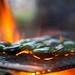 Fire Roasting Jalapeños