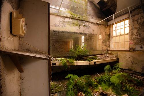 Superieur ... St Marys Asylum   Jungle Bathroom | By Tophermcgrillis