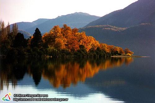 Oto 241 O En Quila Quina San Mart 237 N De Los Andes Patagonia