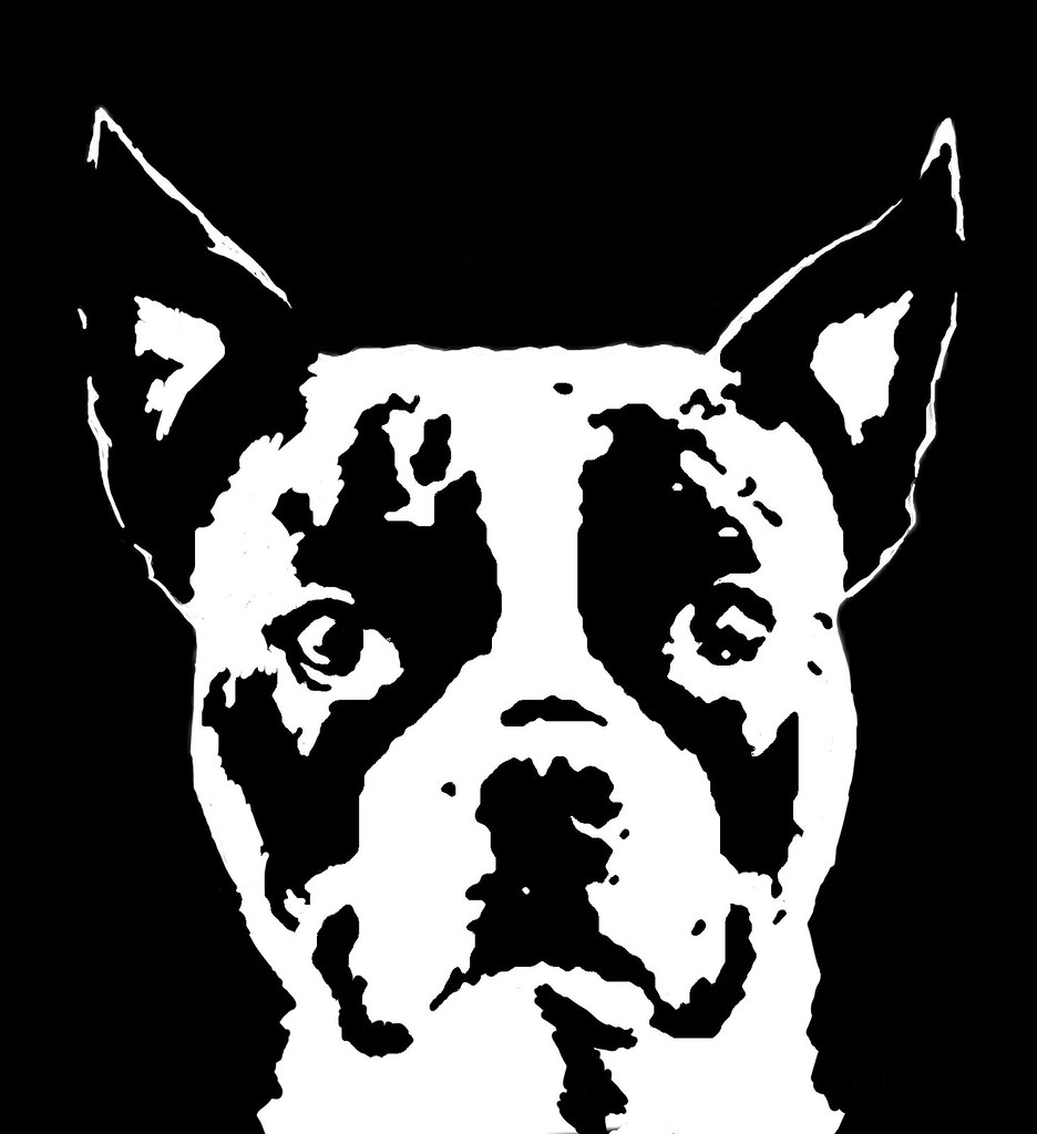 Mad Dog Stencil Wiring Diagrams Diagram Boston Terrier Www Imgkid Com The Image Kid Small