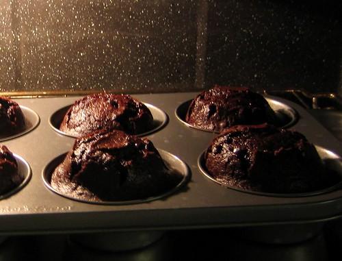 Free Lava Cakes Dominos