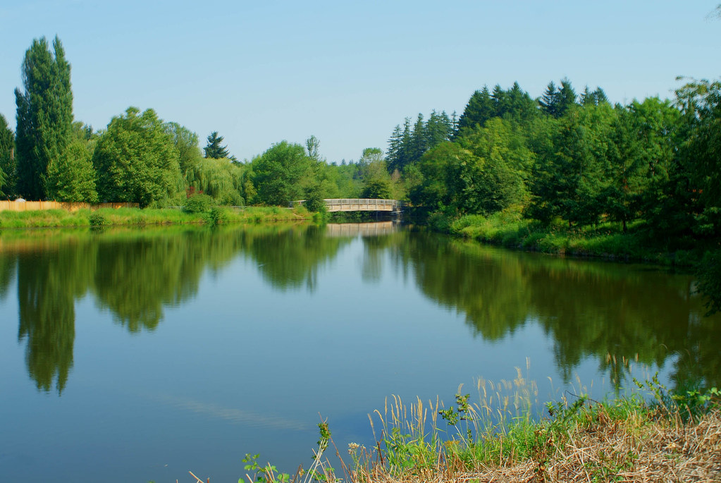 Summer Lake Park Summer Lake Part In Tigard Oregon