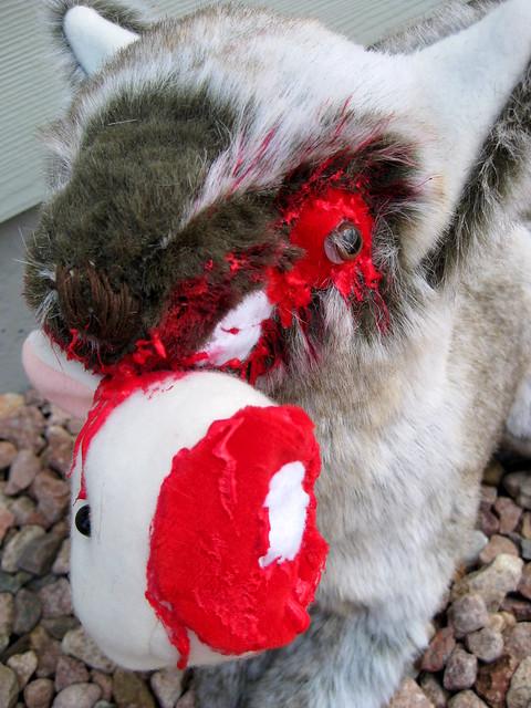 Wolf eating rabbit - photo#16
