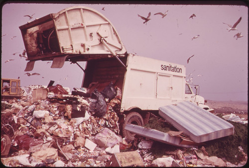 Landfill Operation Is Conducted by the City of New York on the Marshlands of Jamaica Bay. Pollution Hazards and Ecological Damage Have Called Out Strong Opposition 05/1973 | by The U.S. National Archives