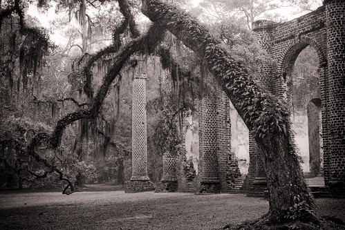 Old Sheldon Church Ruins | by Dustin K. Ryan
