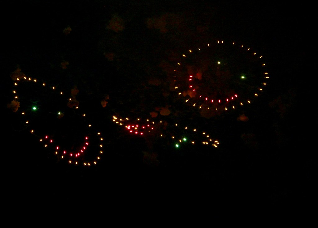 Smiley Face Fireworks July 4th Seattle Sea Turtle
