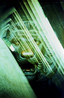 Lion and Column | by Lomo-Cam