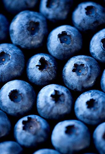 Саженцы и черенки плодовоягодных растений доставка по