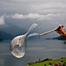 Creating soap bubbles over the fjord with a string and a spoon