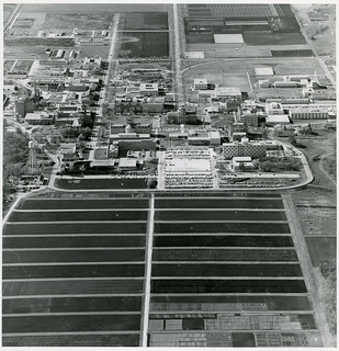 University of Manitoba Looking South West, October 14, 1964, Winnipeg (1964) | by Manitoba Historical Maps