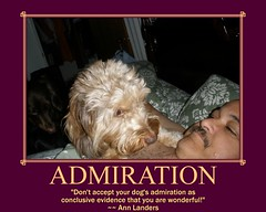 Admiration - A Quote From Ann Landers | by Tobyotter