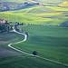 * landscape tuscany *