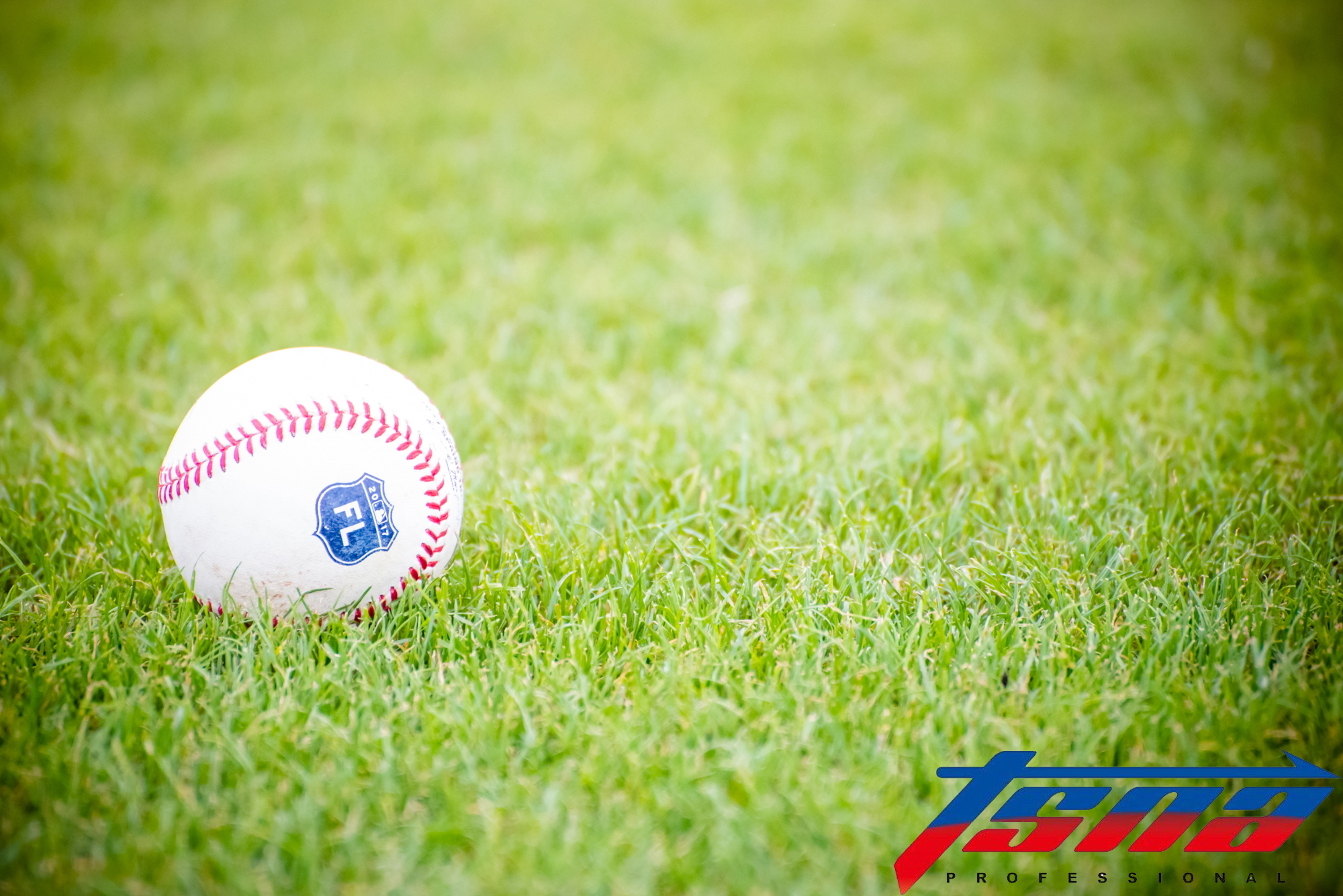 棒球。(資料照,駐美特派李宏政攝)
