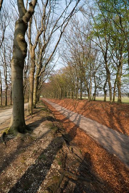 Natural Path By Roberts Health Food