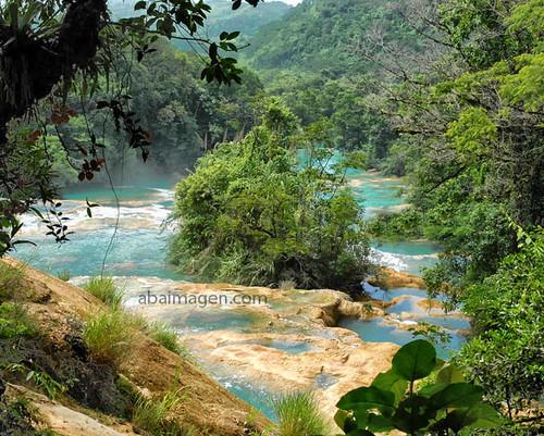 Blue River Chiapas Mexico Lacandona Jungle Arturo