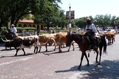 Fort Worth Stockyards 5 | by Pixie Dust