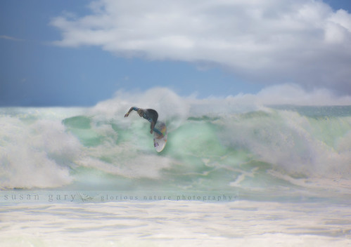 Hang Ten | by *GloriousNature*bySusanGaryPhotography