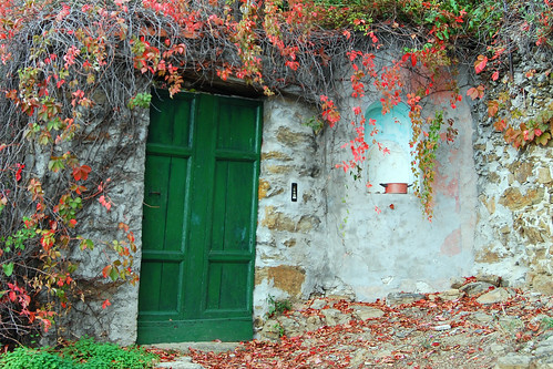 Green Door | by Atilla2008