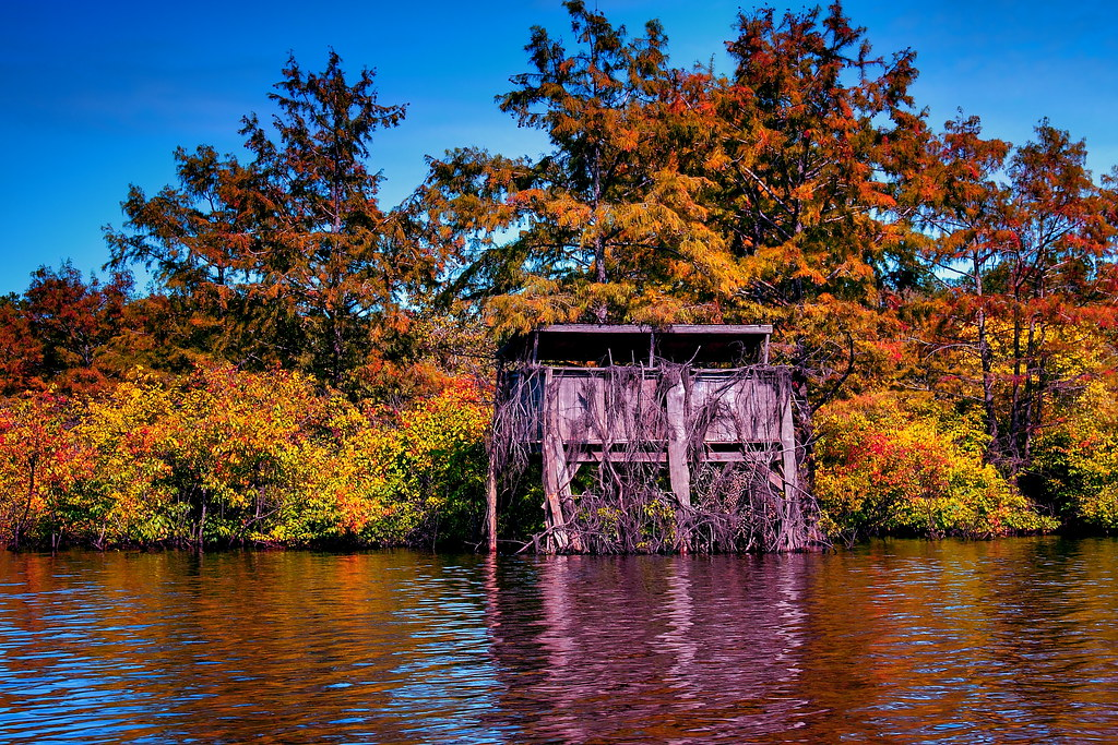 Finch Lake Fall Duck Blind View On Black Blackmagic Flickr