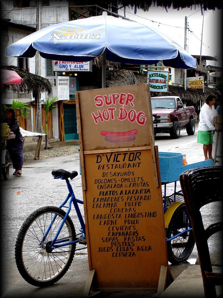 Image Result For Dog Travel