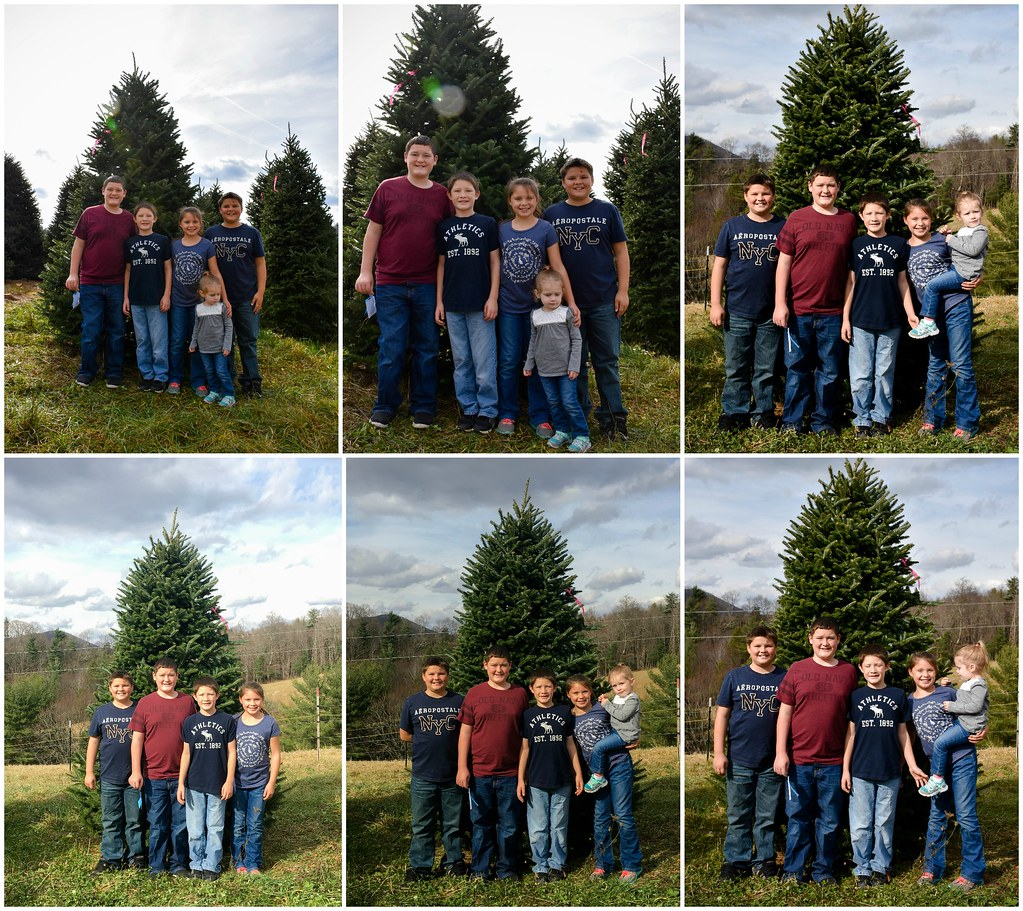 sweet kids and the tree