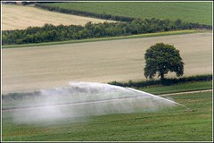 Irrigation | by Capt' Gorgeous