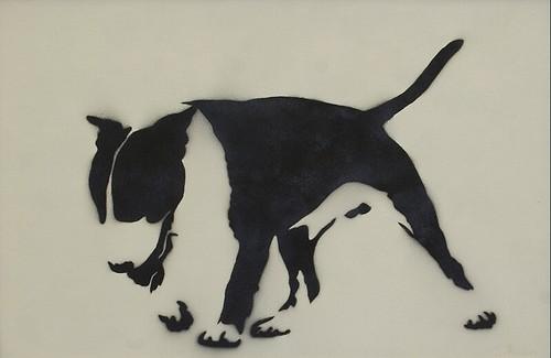 English Bull Terrier Mutate Britain Flickr