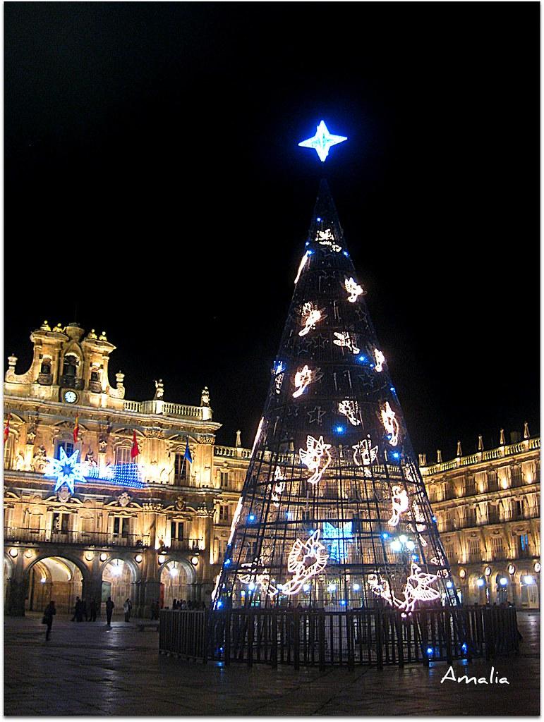 Iluminaci n navide a en la plaza muy original y - Iluminacion original ...