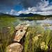 Scotland - Rannoch Moor