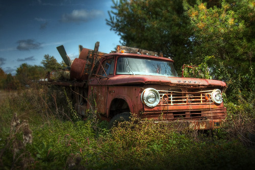 Out to Pasture | by Patrick Campagnone