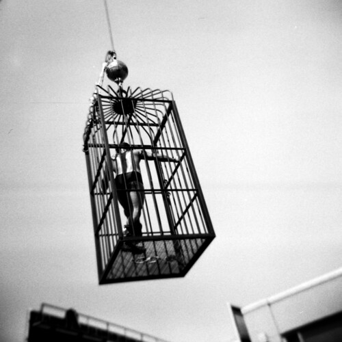 090927_SF_1_005_Cage | by dotann