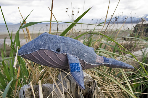 boro blue whale | by fog and swell