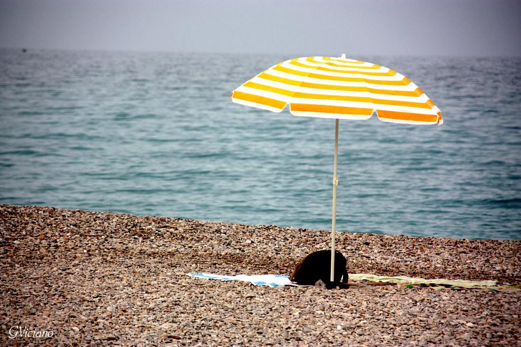 Best Beach Umbrella For Wind Australia