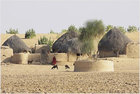 dhani, thar desert | typical habitat for a family or two ...  dhani, thar des...