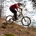 Bicycle downhill series