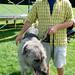 Irish Wolfhound & Chris